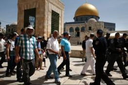 الخارجية الأردنية تدين اقتحام المسجد الأقصى