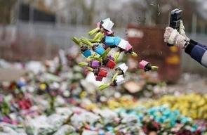 هولندا تتخلص من ملايين الزهور بسبب توقف الطلب عليها بسبب