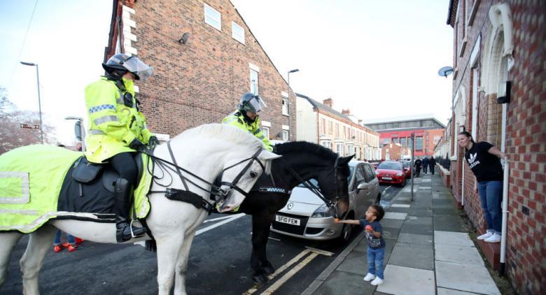 حصان شرطة يرفض الذهاب للعمل قبل تناول كوب من الشاي
