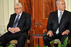 """معركة الأبقار بين السلطة و""""إسرائيل"""".. ماذا تعرف عنها؟"""
