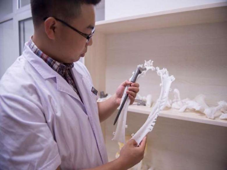 اكتشاف وظيفة جديدة للعظام
