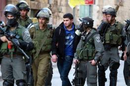 الاحتلال يعتقل شبانا لدى محاولتهم الوصول إلى الأقصى