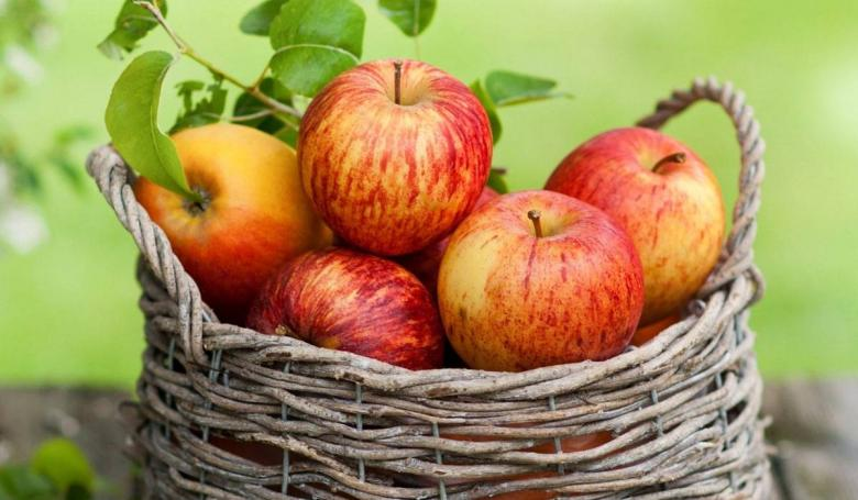 خبراء يوصون بتفاحة كل يوم لهذه الأسباب