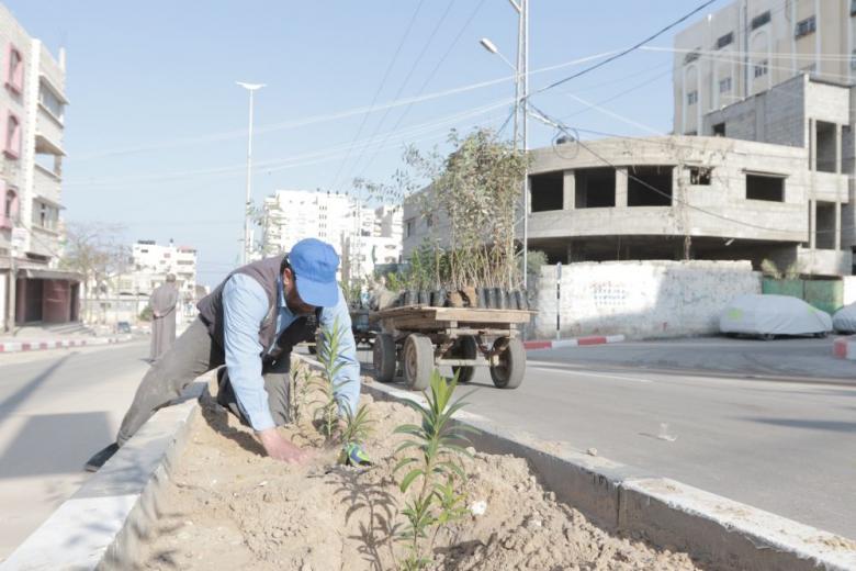 بلدية غزة تزرع ( 19) عشر ألف شتلة خلال العام 2017