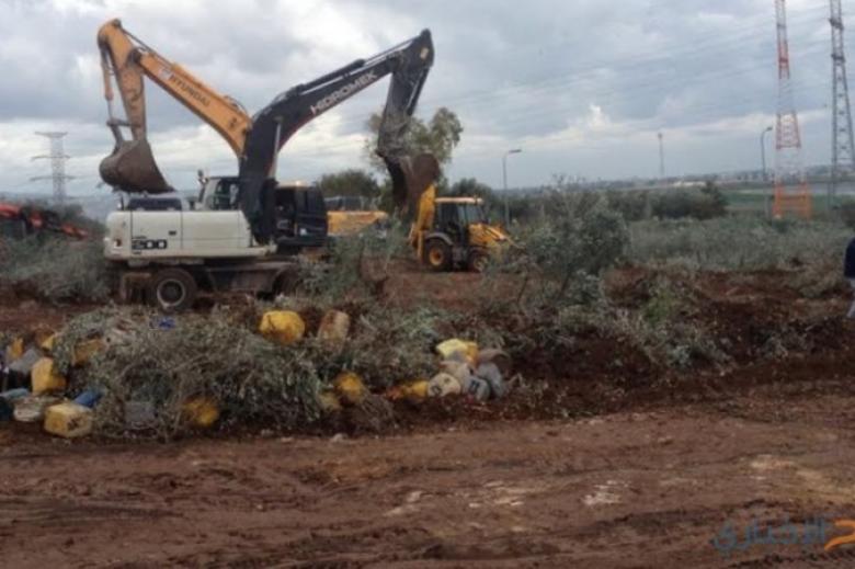 الاحتلال يجرف أراضٍ ويقتلع أشتالًا جنوب بيت لحم