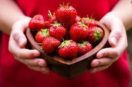 6 فوائد صحية رائعة للفراولة.. أهمها الوقاية من أمراض السرطان