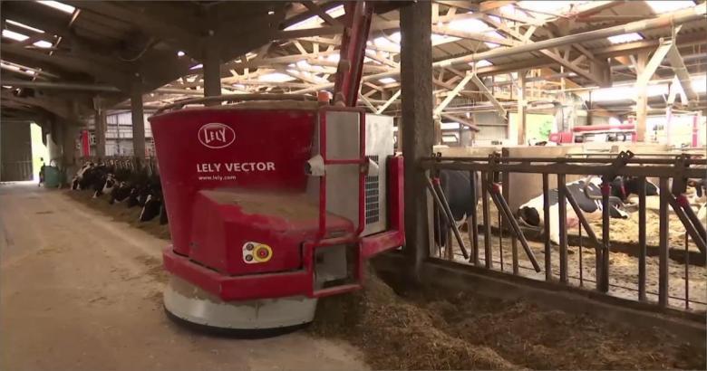 مزرعة للأبقار تديرها الروبوتات بفرنسا