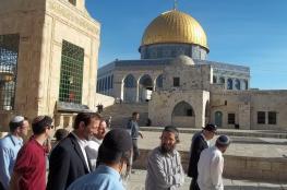 مستوطنون يقتحمون الأقصى وسط حماية مشددة من الاحتلال