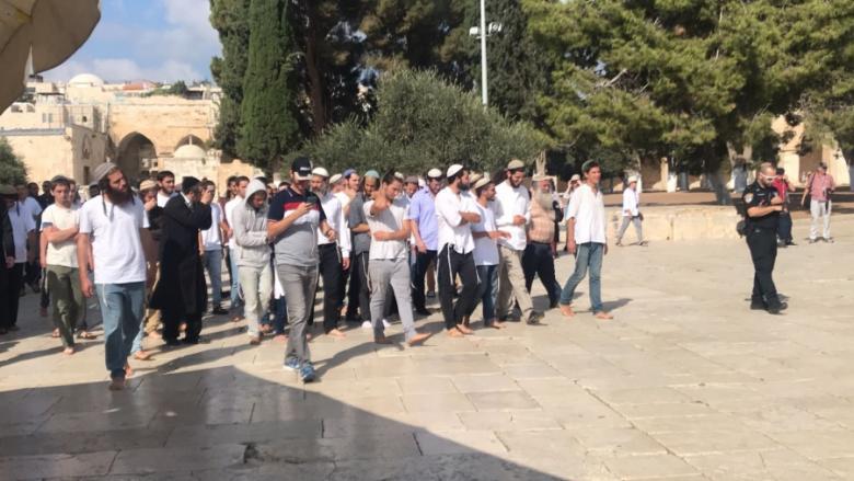 47 مستوطنًا يقتحمون المسجد الأقصى