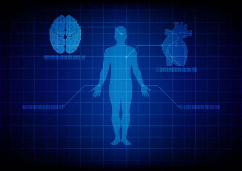 9 أجزاء في جسمك لا تعلم بوجودها من الأساس
