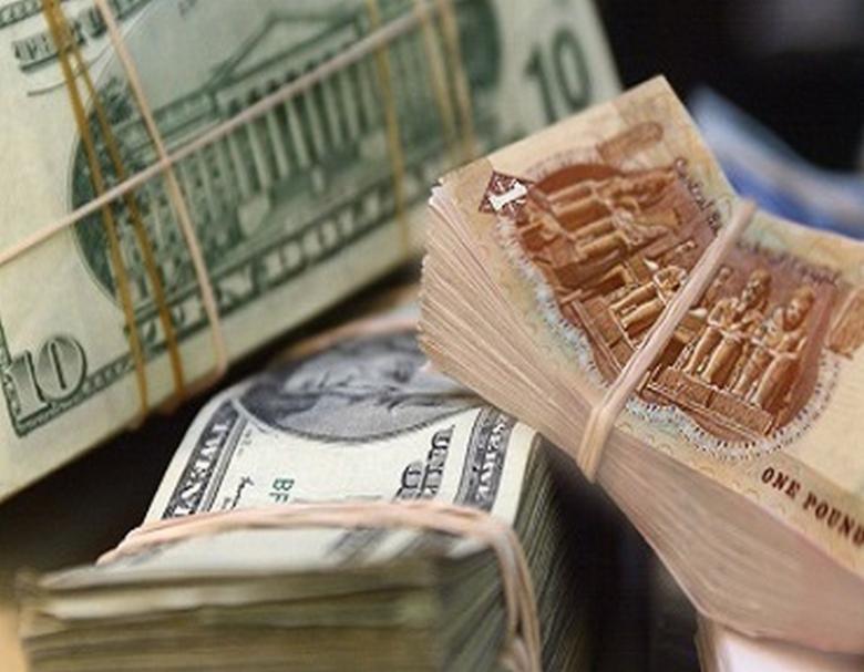 الشركات المصرية تجنى ثمار تعويم الجنيه بأرباح عالية
