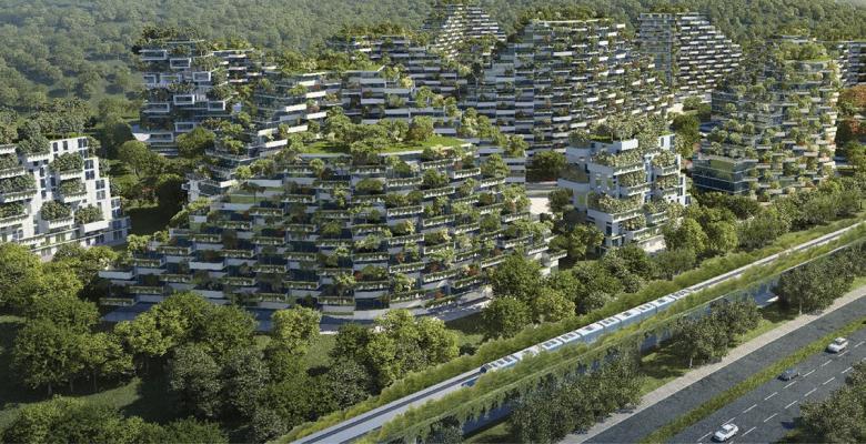 """أول """"مدينة غابات"""" في العالم"""