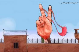 إضراب الحرية والكرامة يدخل يومه الـ 24