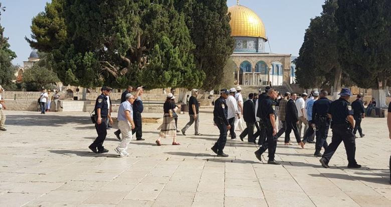 71 مستوطنًا يقتحمون باحات المسجد الأقصى
