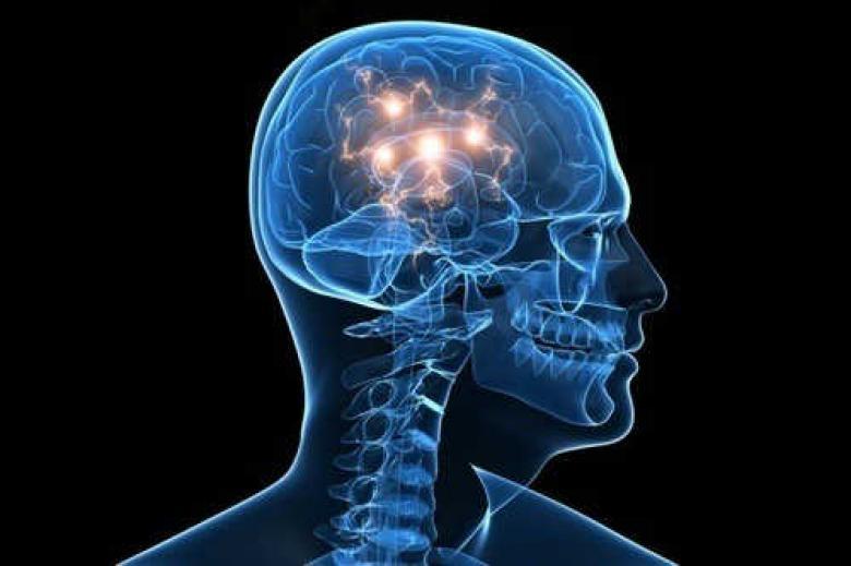 """المخ """"ينتج"""" خلايا الذاكرة خلال العقد الثامن من العمر"""