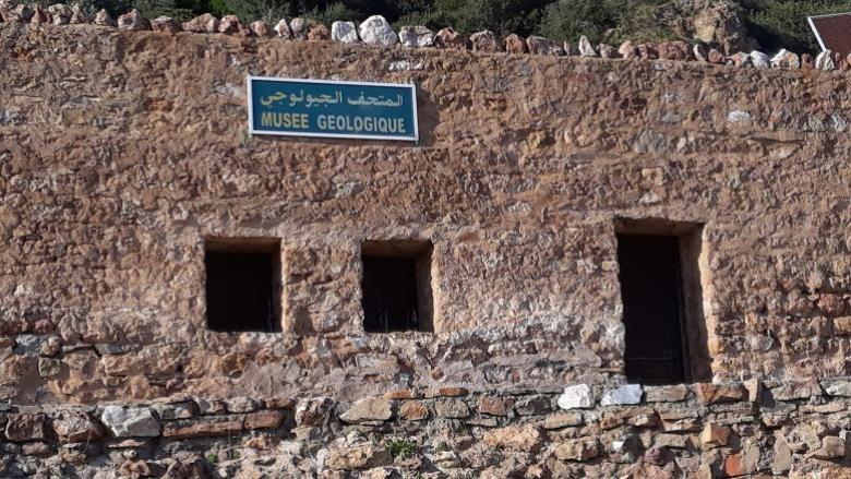 محميّة إشكل في تونس.. مهد عالمي للطبيعة والتاريخ