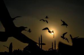 غروب الشمس في إسطنبول