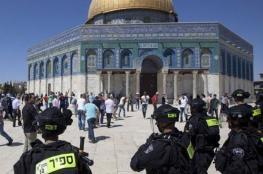 59 مستوطنا يقتحمون الأقصى بحماية شرطة الاحتلال