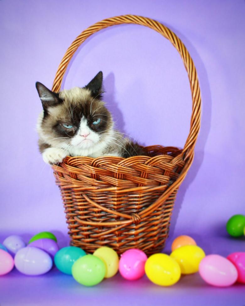 """العالم يودع """"القطة الغاضبة"""""""