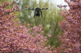 علماء يطلقون مبادرة لزراعة مليار شجرة بالطائرات المسيّرة