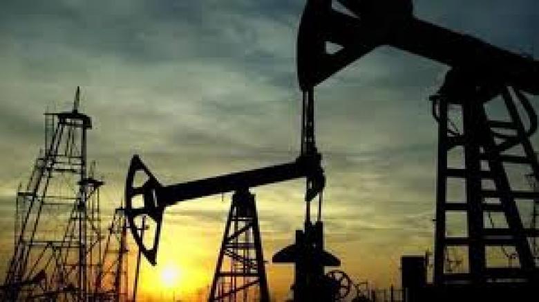 الهند: الإمارات تؤكد إمدادنا بالنفط وغاز البترول المسال رغم هجوم الناقلات