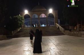 جمال المسجد الأقصى الليلة الماضية