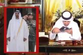 مذيع إماراتي يقبّل نعلا لمحمد بن زايد ويثير السخط