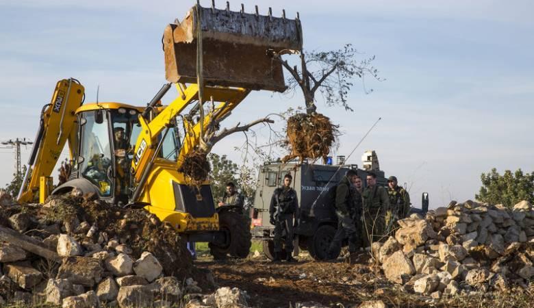 مستوطنون يجرفون عشرات الدونمات شرق يطا