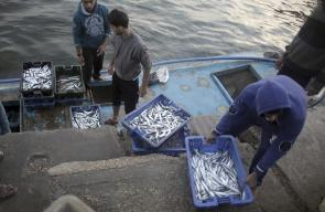 جولة في ميناء غزة اليوم