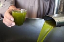الزراعة بغزة: حققنا اكتفاءً ذاتيًا في إنتاج زيت الزيتون