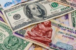 توقع باستمرار تراجع الجنيه المصري أمام الدولار