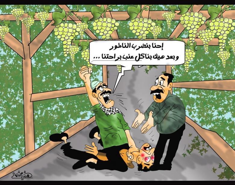 عنب غزة حصرم