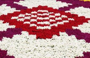 أكبر سجادة من الزهور في العالم بتركيا