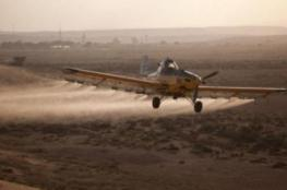 الاحتلال يرش مبيدات ضارة على الأراضي الزراعية بغزة