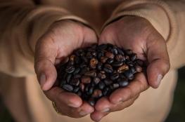 إندونيسيا.. القهوة وزيت النخيل مقابل طائرات سوخوي