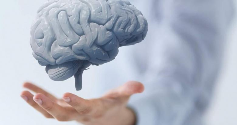 دراسة تكشف أهمية الصيام في تنظيف خلايا الدماغ