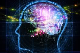 السبب الرئيسي للسمنة في الدماغ البشري