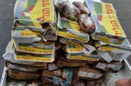 الزراعة والاقتصاد يتلفان 2200 كيلو جناح فاسد