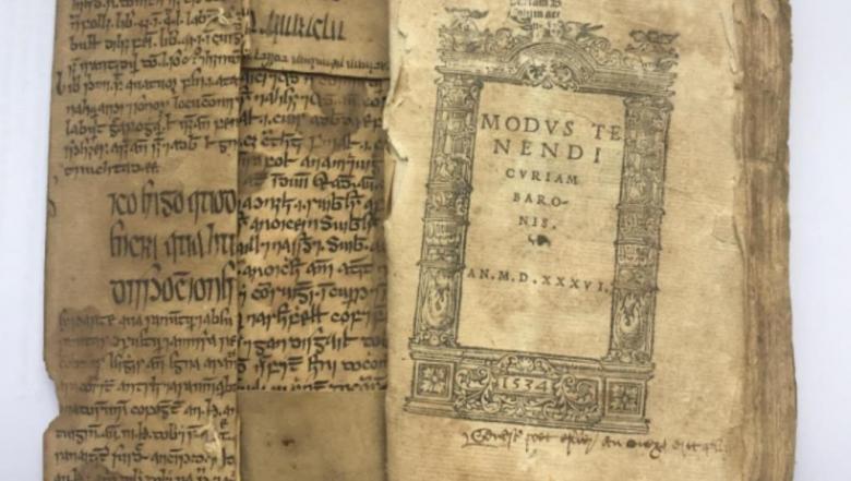 مخطوطة أيرلندية قديمة شاهد على علاقة العرب بالثقافة الغيلية