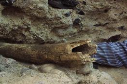 العثور على أقدم آثار للبشر في أمريكا