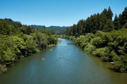 تلوث نهر في كاليفورنيا بعد تسرُّب 97 ألف غالون من النبيذ الأحمر