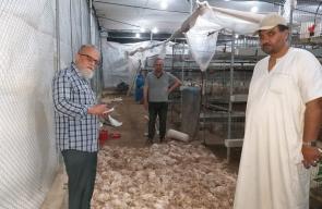 الزراعة تستنفر طواقمها في غزة لمتابعة موجة الحر الحالية