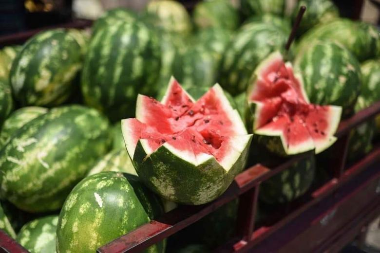 توضيح مهم من الزراعة بشأن البطيخ الموجود في أسواق غزة