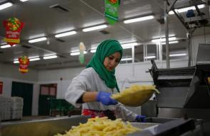 نسوة يعملن في مصنع للمواد الغذائية ببيت حانون