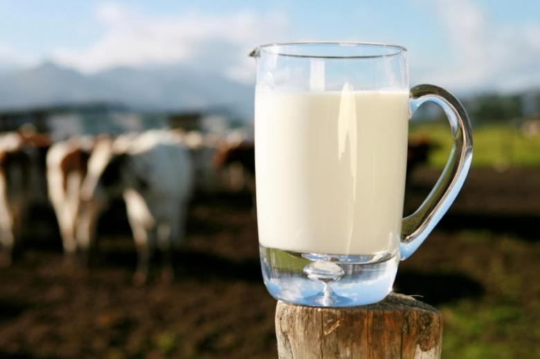 لتفادي النفخة اليكم بديل حليب الأبقار