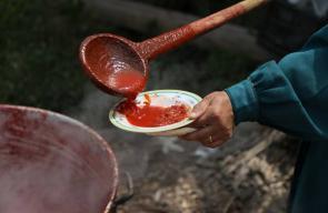 البندورة المطبوخة.. أكله فلسطينية هل جربتها؟