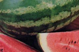 """وقف إدخال البطيخ من """"إسرائيل"""""""