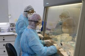 ملحم: ارتفاع عدد الإصابات بفيروس كورونا في فلسطين إلى 117