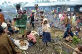 """ما هو الشيء الذي تصدره """"الكونغو الديمقراطية"""" للعالم؟"""