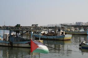 الصّيدُ بالميناء.. سمكٌ مسمومٌ يهدّدُ المواطنين
